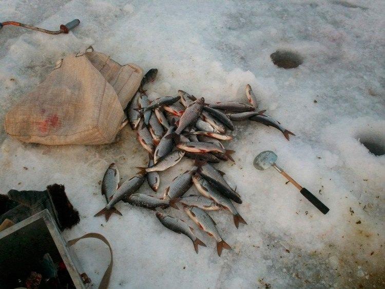 рыбака в конаково