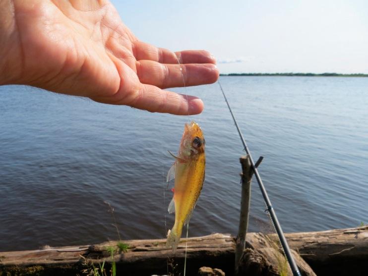 о.кегостров рыбалка